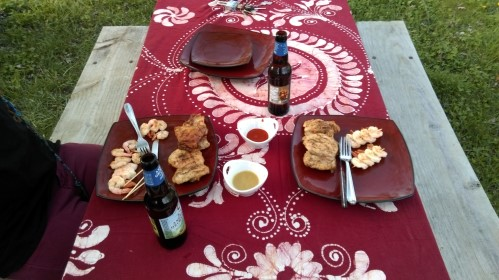 Dinner on the Picnic Table - RV Questions