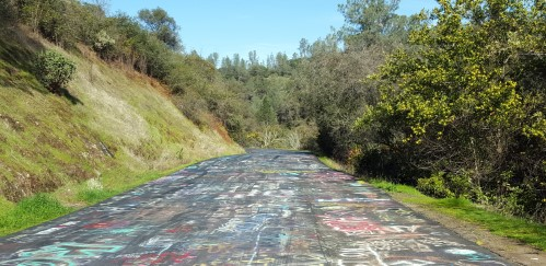 Honey Run Road Chico California Grafitti