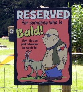 Bald Parking Brooksville Florida