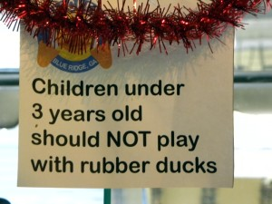 Rubber Ducks Sign Blue Ridge Georgia