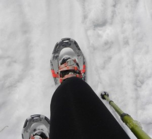 Snow Shoes at the Donner Pass Summit Trail Hike